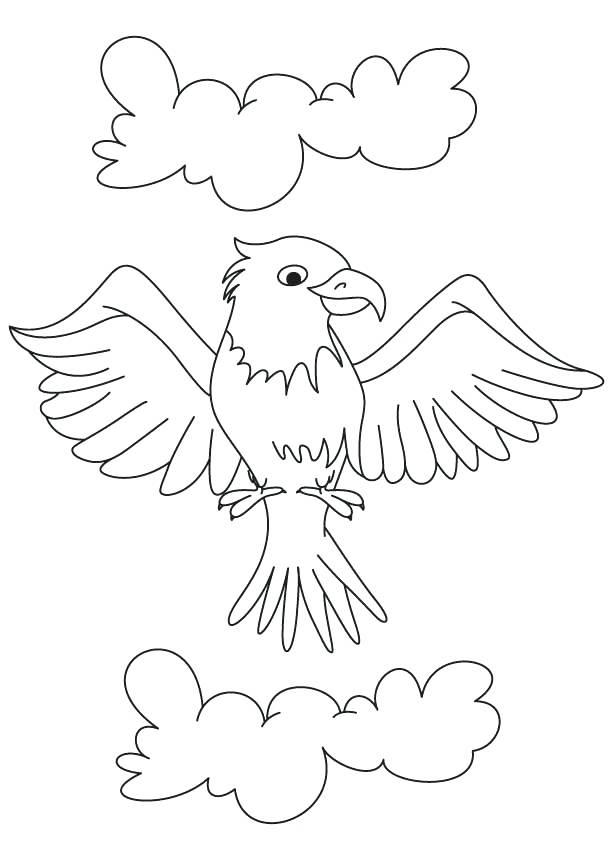 613x860 Eagle Color Page Cartoon Eagle Coloring Page Bald Eagle Head