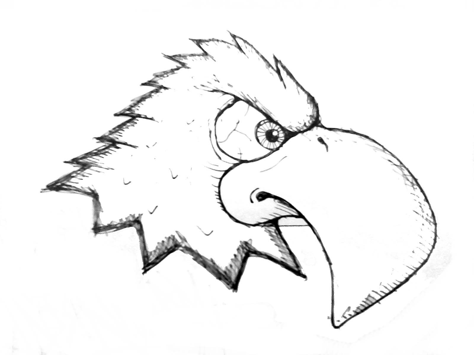 1600x1200 How To Draw A Eagle