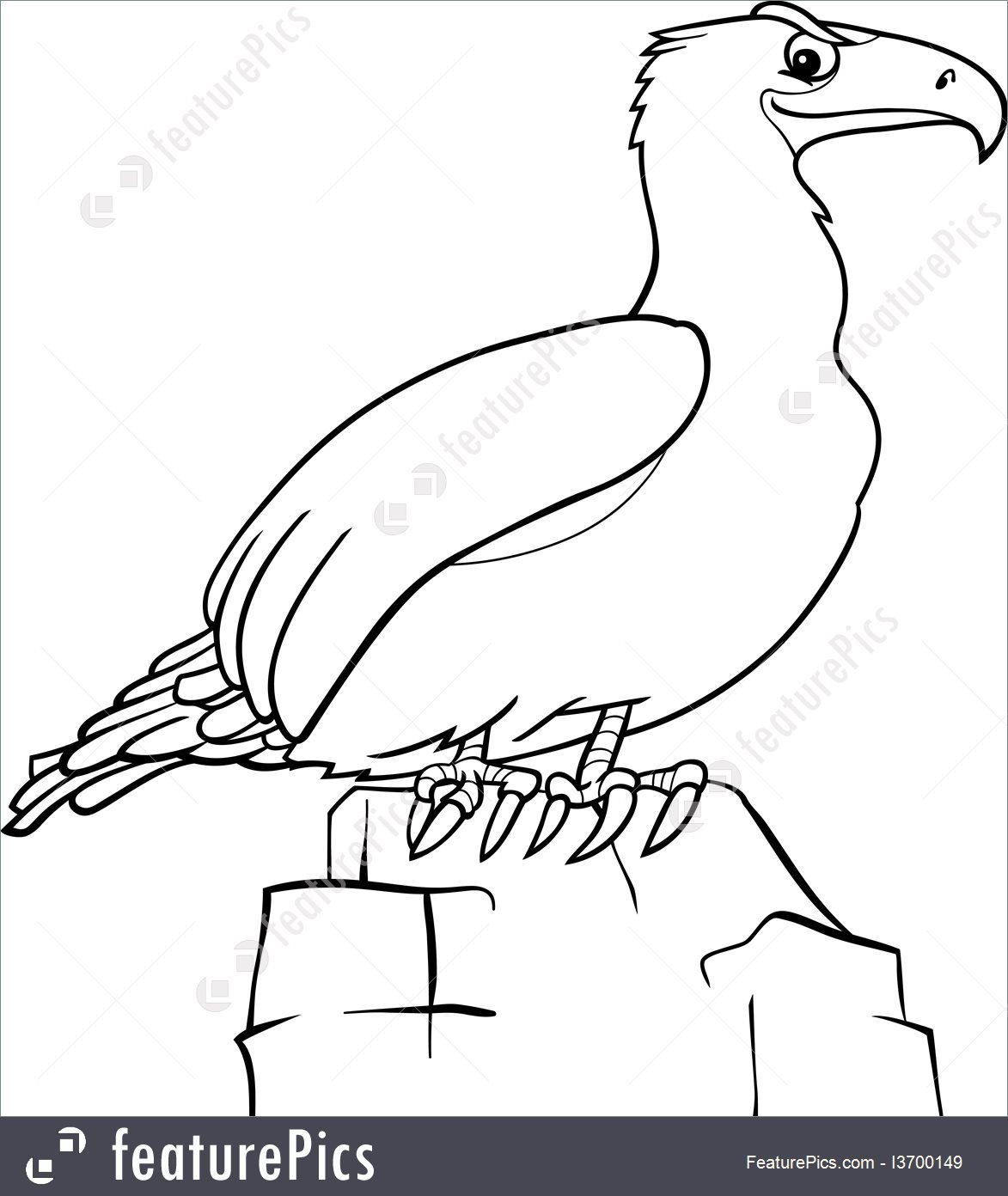 1173x1392 Illustration Of Cartoon Eagle For Coloring Book