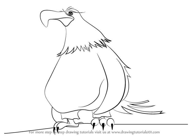 800x566 Step By Step How To Draw Mighty Eagle From The Angry Birds Movie