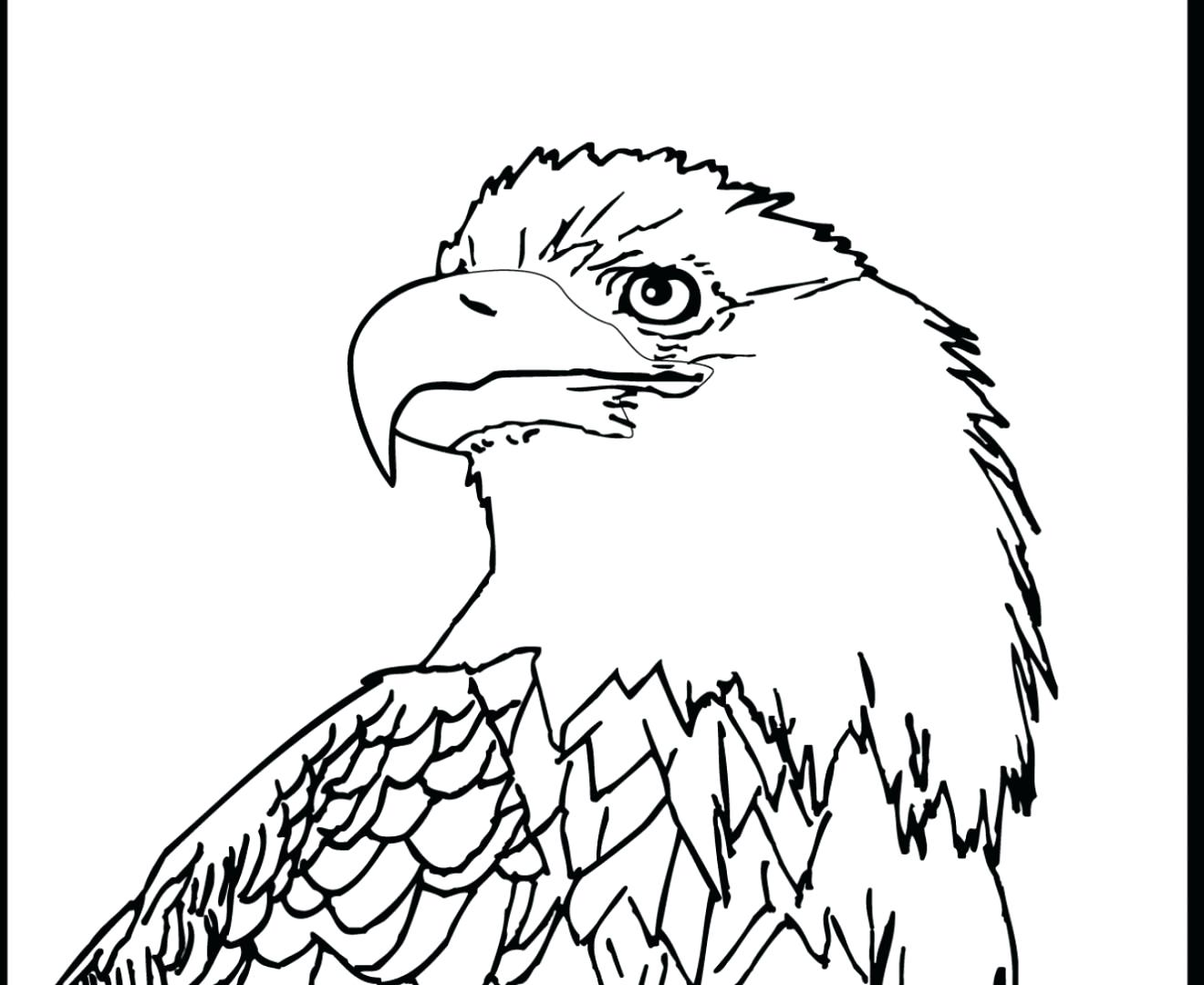 1320x1080 Coloring Coloring Page Of An Eagle
