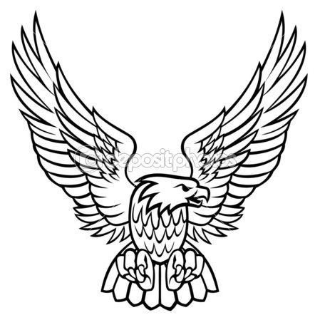 449x449 55 Best G Eagle Images On Bird, Tattoo Ideas And Eagle
