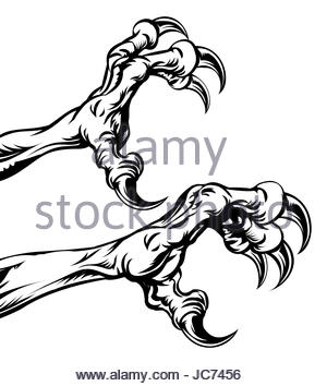 300x354 An Eagle Bird Talon Or Claw Illustration Stock Photo 128135044