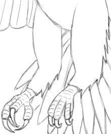 220x264 Drawn Bald Eagle Flight Drawing