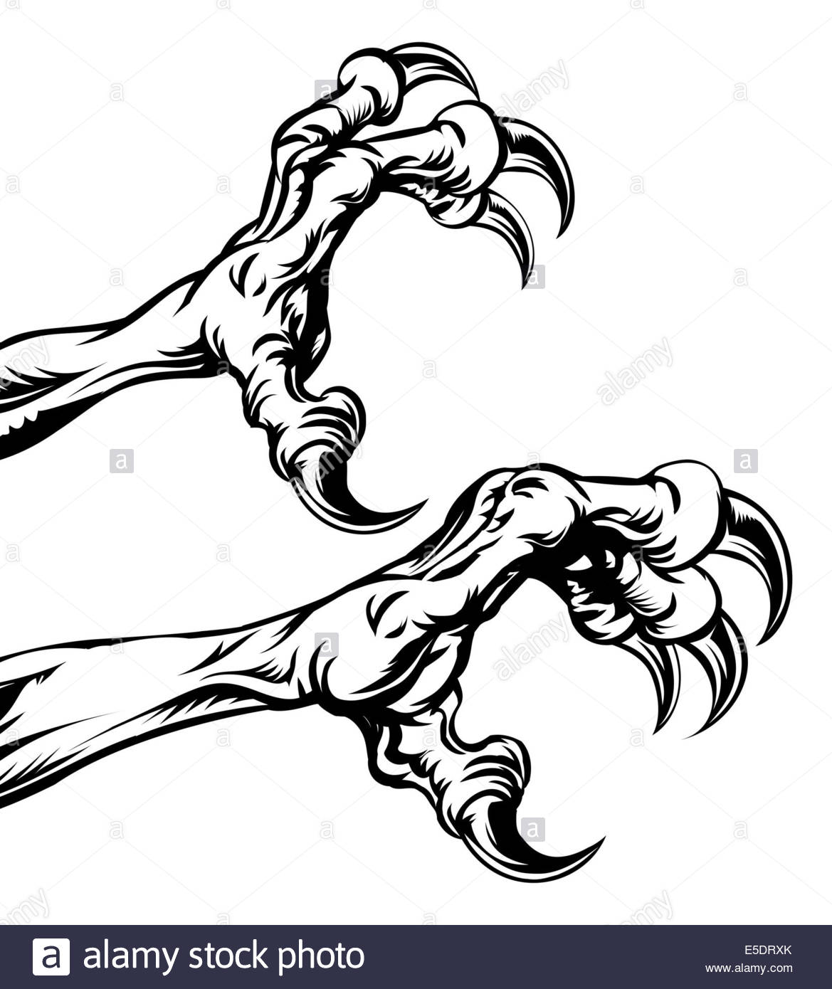 1169x1390 An Illustration Of Eagle Or Monster Animal Claws Or Talons Stock