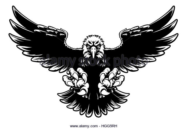 640x443 Bald Eagle Black And White Stock Photos Amp Images