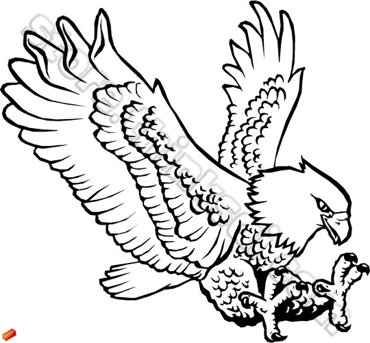 Eagle Claws Drawing at GetDrawings | Free download