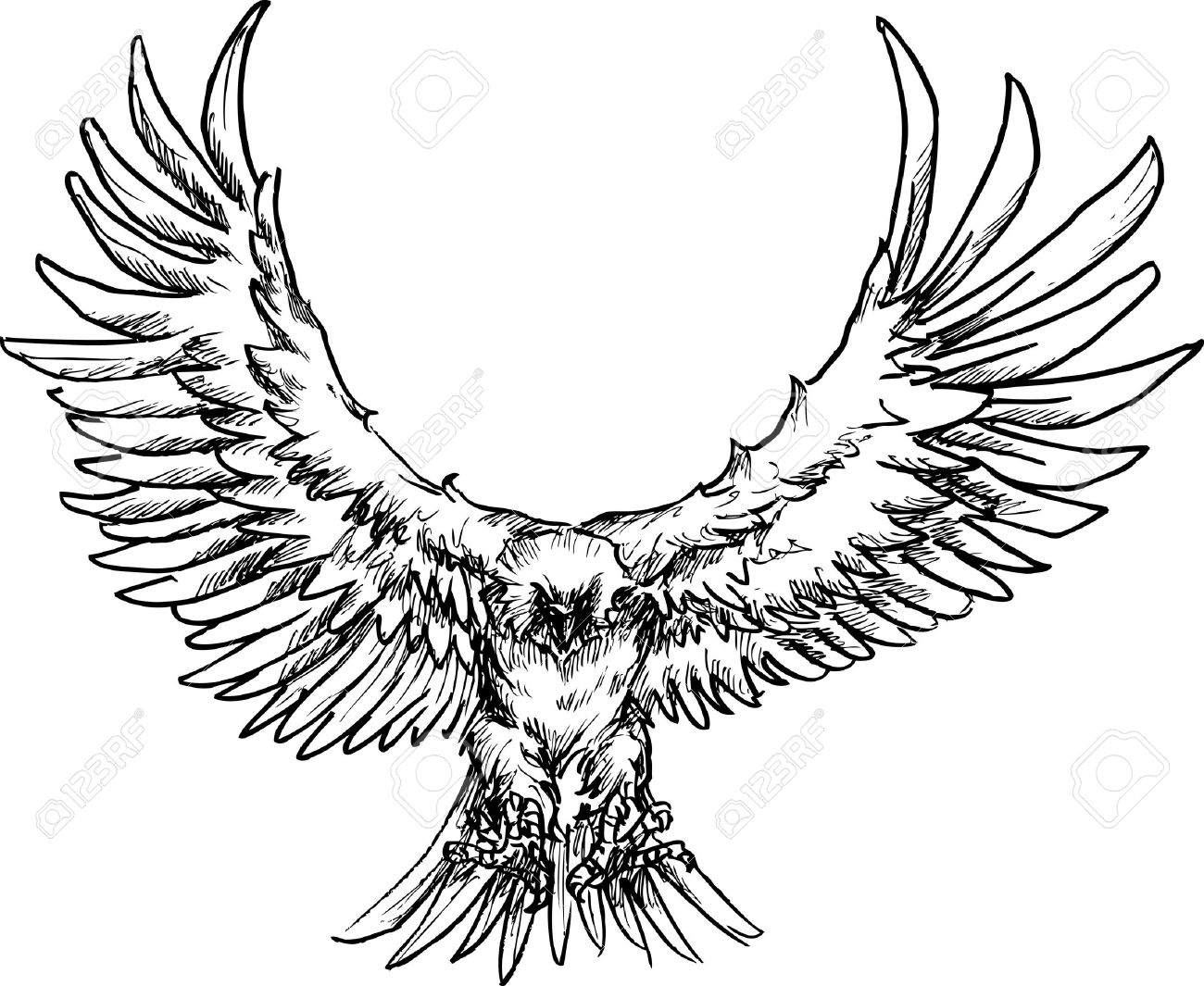 1300x1065 Hand Drawn Eagle Royalty Free Cliparts, Vectors, And Stock