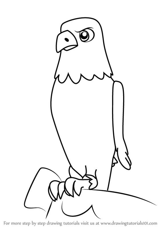 567x800 Learn How To Draw The Eagle From Paw Patrol (Paw Patrol) Step By