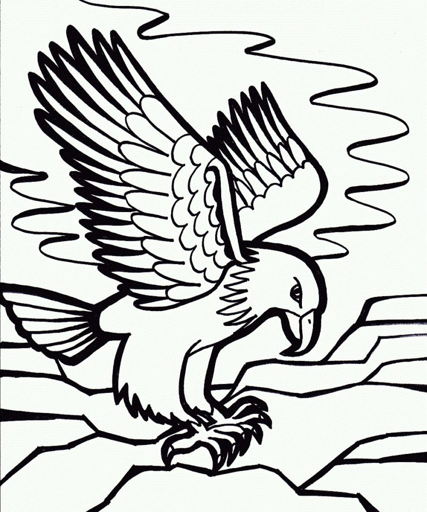 853x1024 Best Of Photograph Of Eagle Coloring Pages