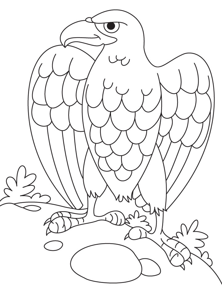 720x955 Cartoon Eagle Coloring Pages Coloring Page