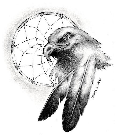 Eagle Eye Drawing
