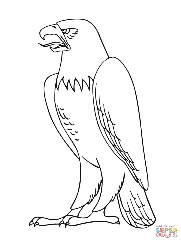768x1024 How To Draw A Bald Eagle Bald Eagle From Alaska Coloring Page Free