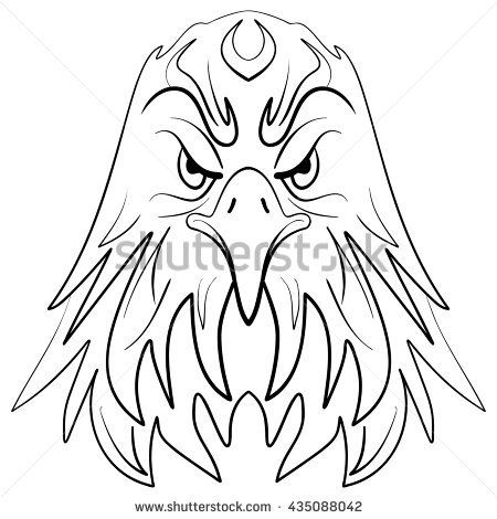 Eagle Face Drawing