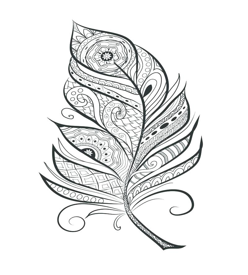 800x889 Feather Coloring Page And Feather Coloring Page Eagle Coloring