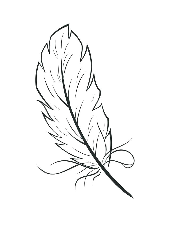 736x958 Feather Coloring Page As Feather Coloring Page Free Printable