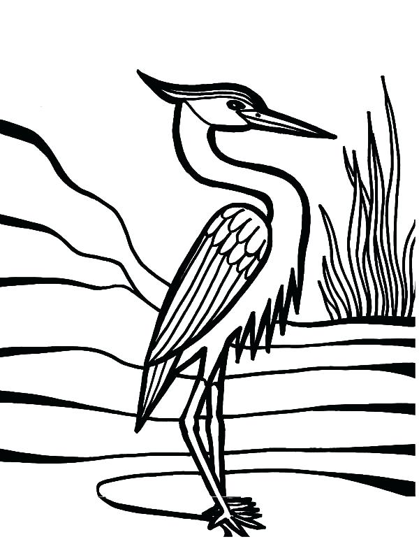 600x778 Feather Coloring Page Crane Bird Beautiful Feather Coloring Pages