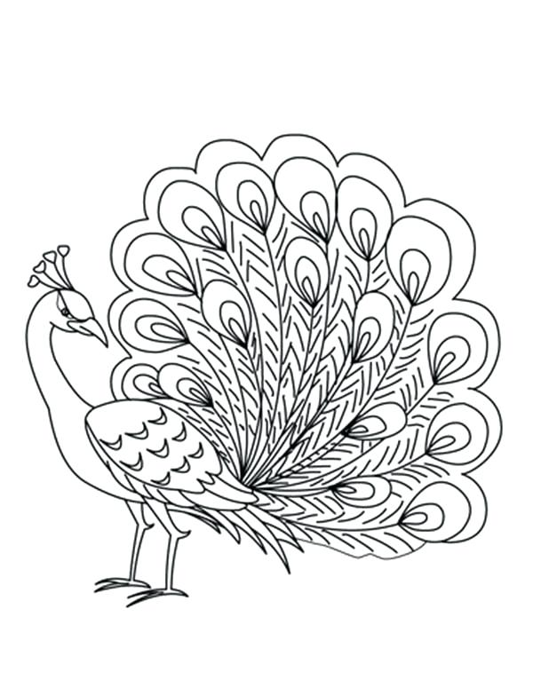 600x775 Feather Coloring Page Packed With Coloring Page Fantasy Feathers