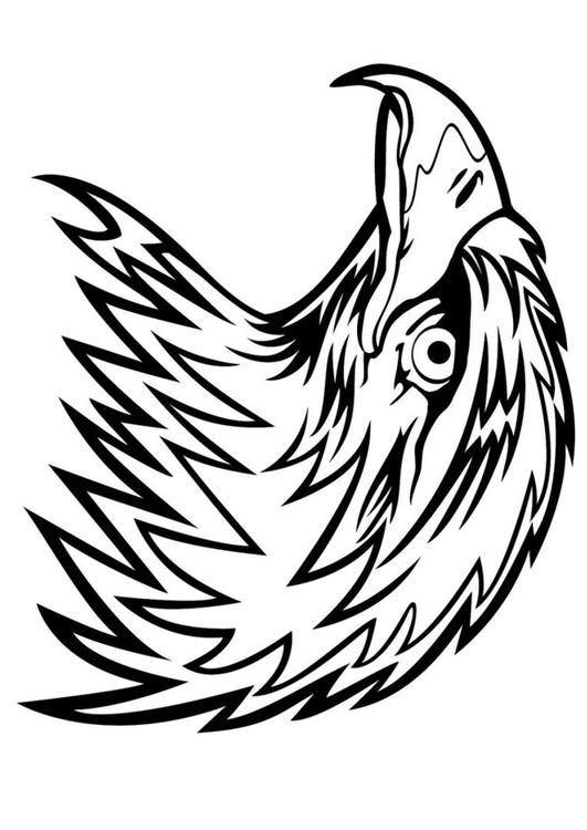 531x750 Coloring Page Eagle