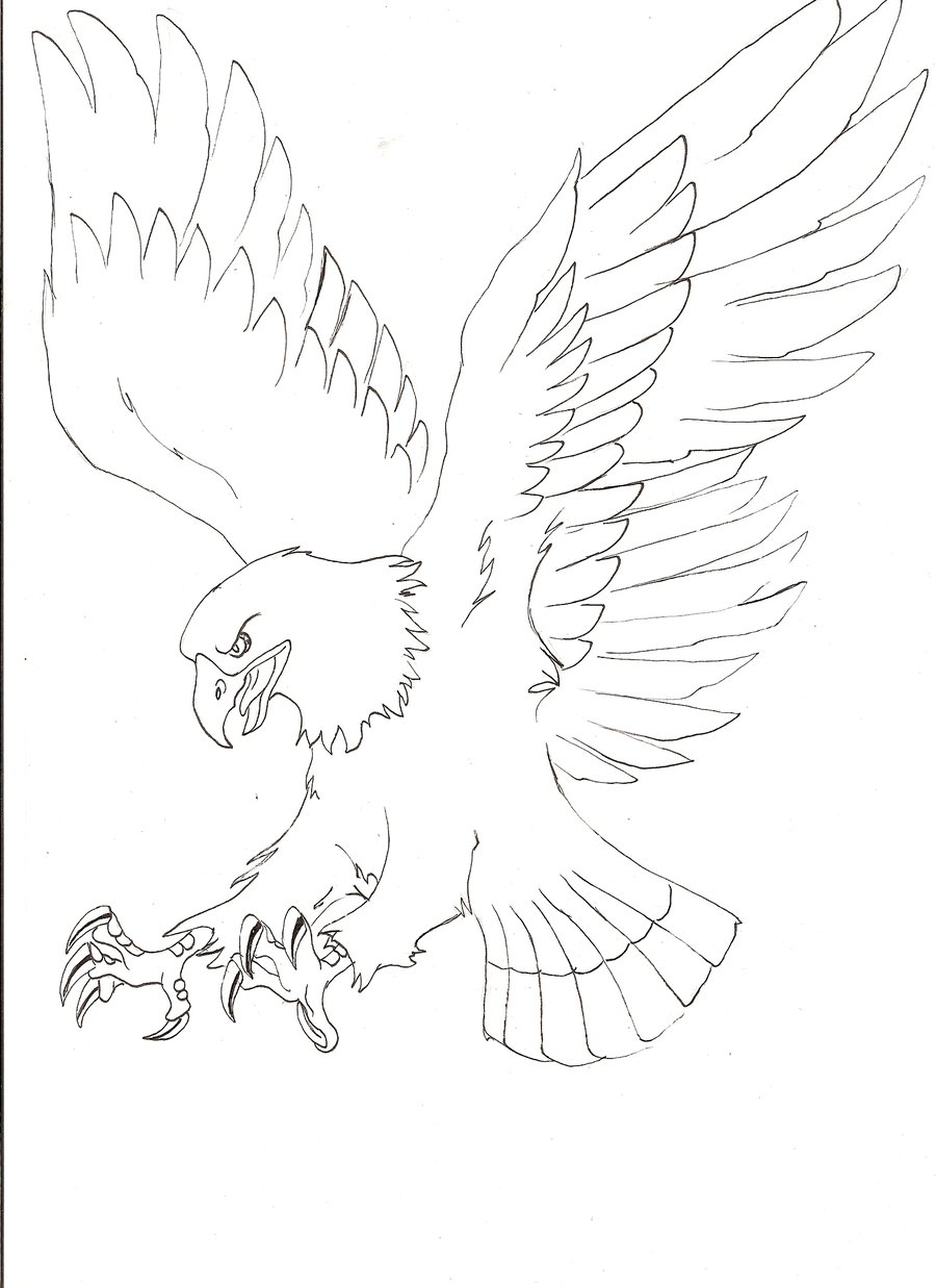 900x1237 Easy Flying Eagle Drawing