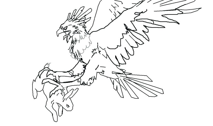 878x520 Bald Eagle Coloring Page Also Image Pages Bal On Eagle Color Page