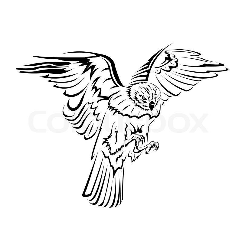 800x800 Falcon Flight Tattoo Black And White Stock Vector Colourbox