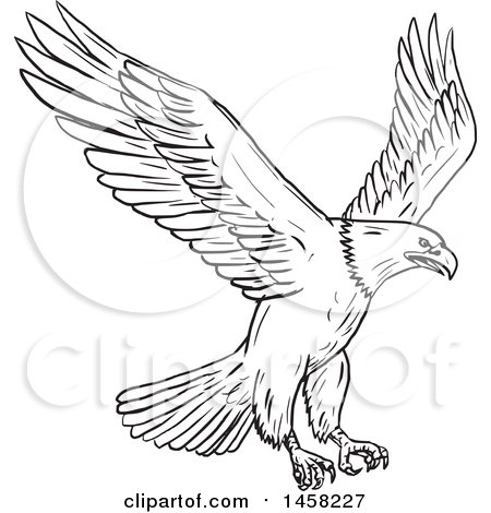 450x470 Royalty Free Eagle Illustrations By Patrimonio Page 1