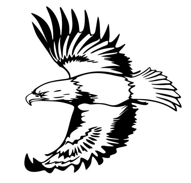 610x583 The Best Eagle Silhouette Ideas On Eagle Drawing