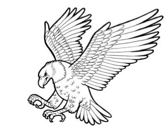 342x277 Eagle In Flight Stencil Raptor Art Inspiration