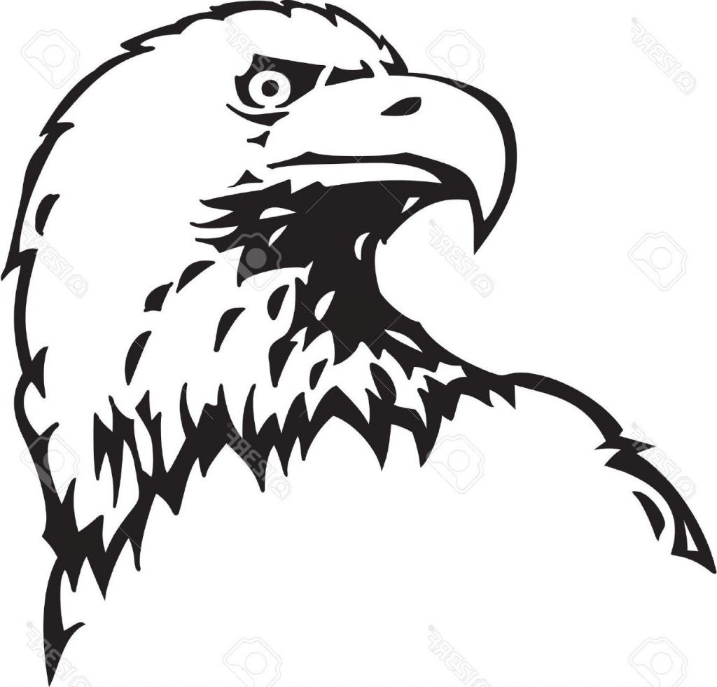 Eagle Outline Drawing at GetDrawings com | Free for personal