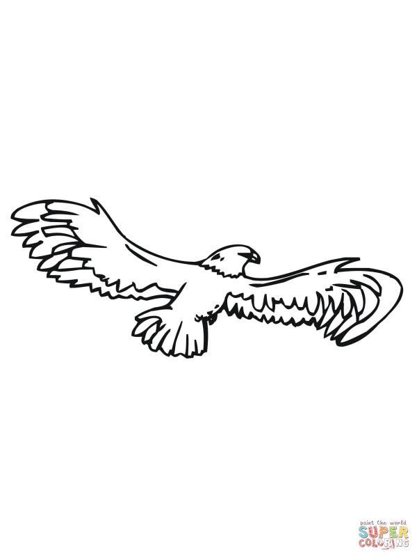 eagle wing drawing at getdrawings free for personal use eagle Eagles Football Clip Art 600x800 eagle wings spread clipart black and white