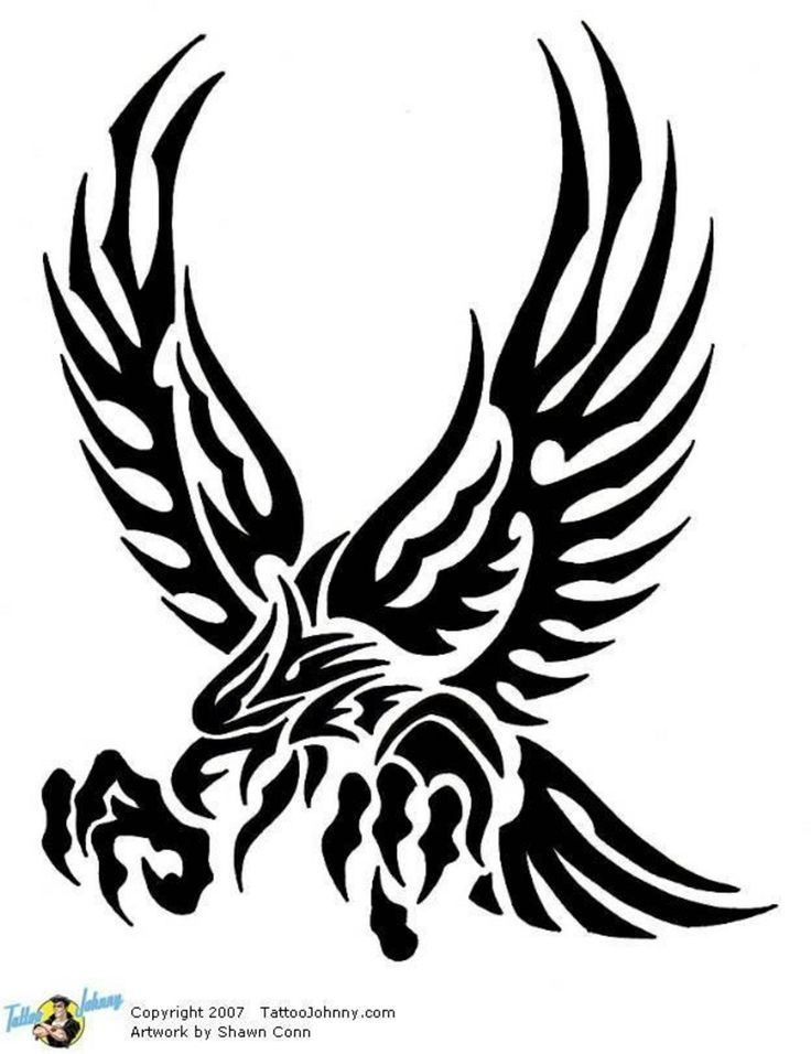 Eagle Wings Drawing at GetDrawings com | Free for personal