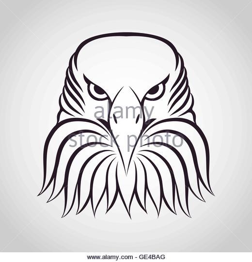 520x540 Eagle Shield Logo Stock Photos Amp Eagle Shield Logo Stock Images