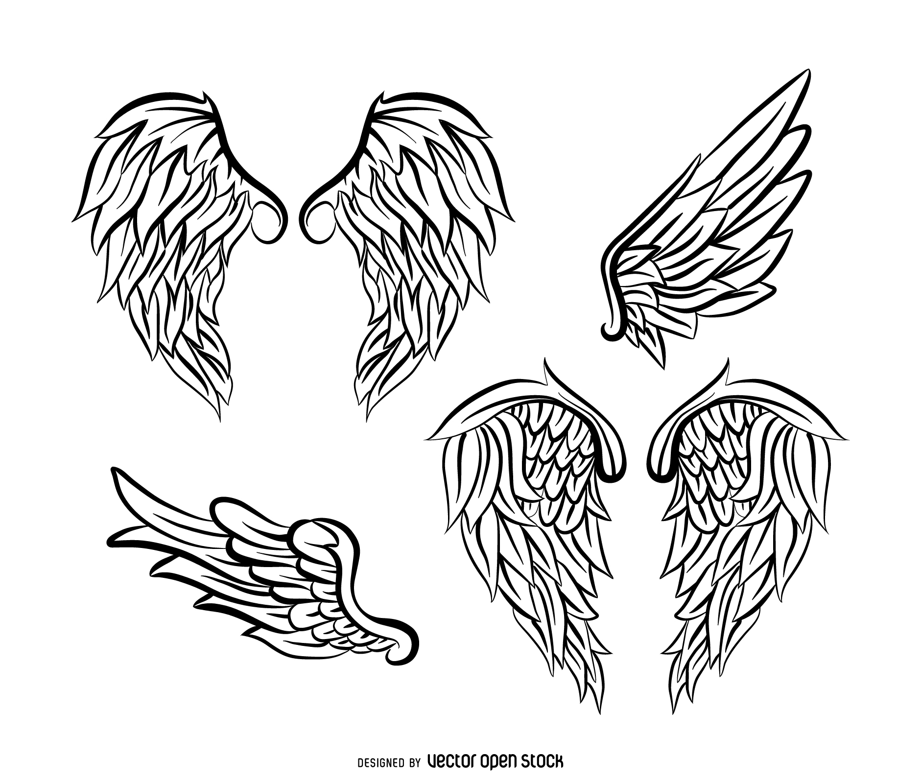 Eagles Wings Drawing At Free For Personal Use Bald Eagle Diagram Download Wiring Diagrams Pictures 1881x1601 Vector Amp Graphics To