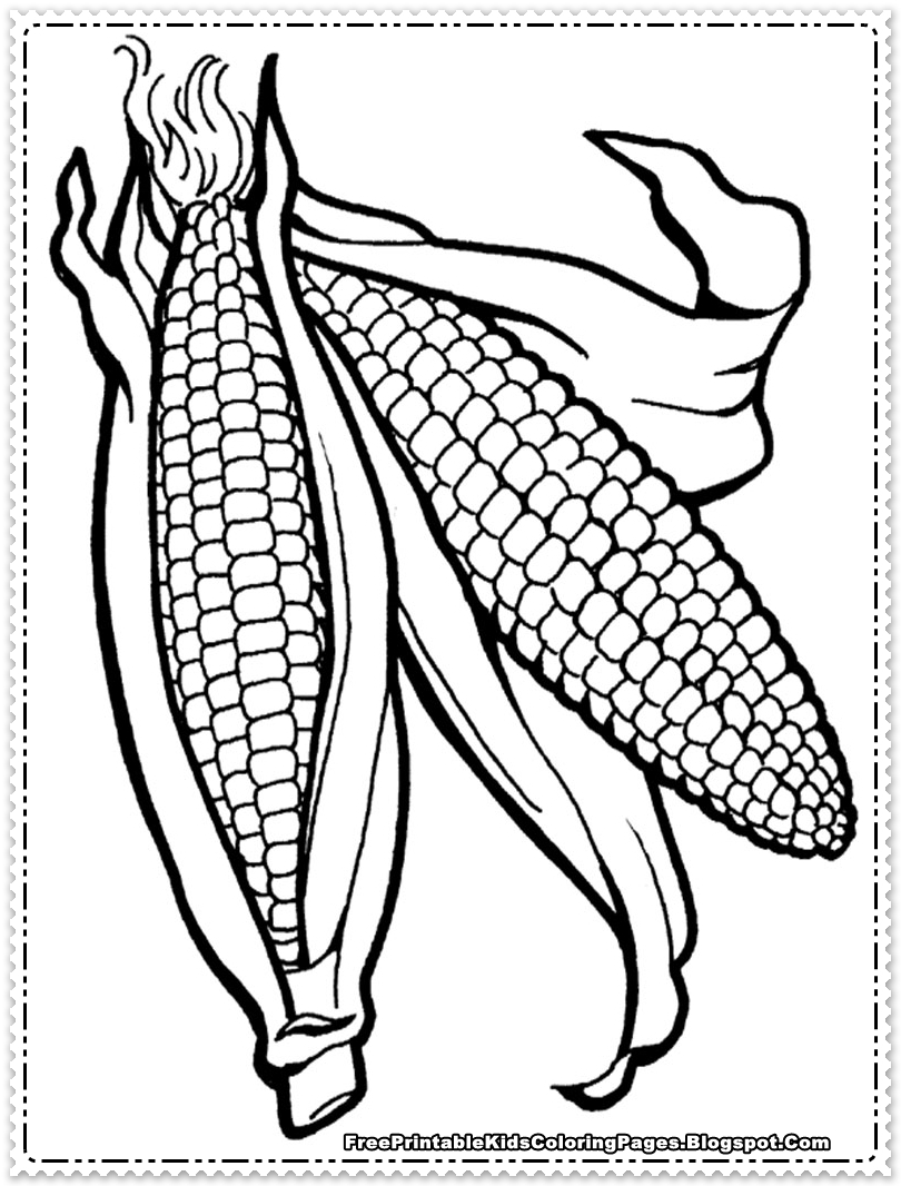 Ear Of Corn Drawing at GetDrawings.com | Free for personal use Ear ...