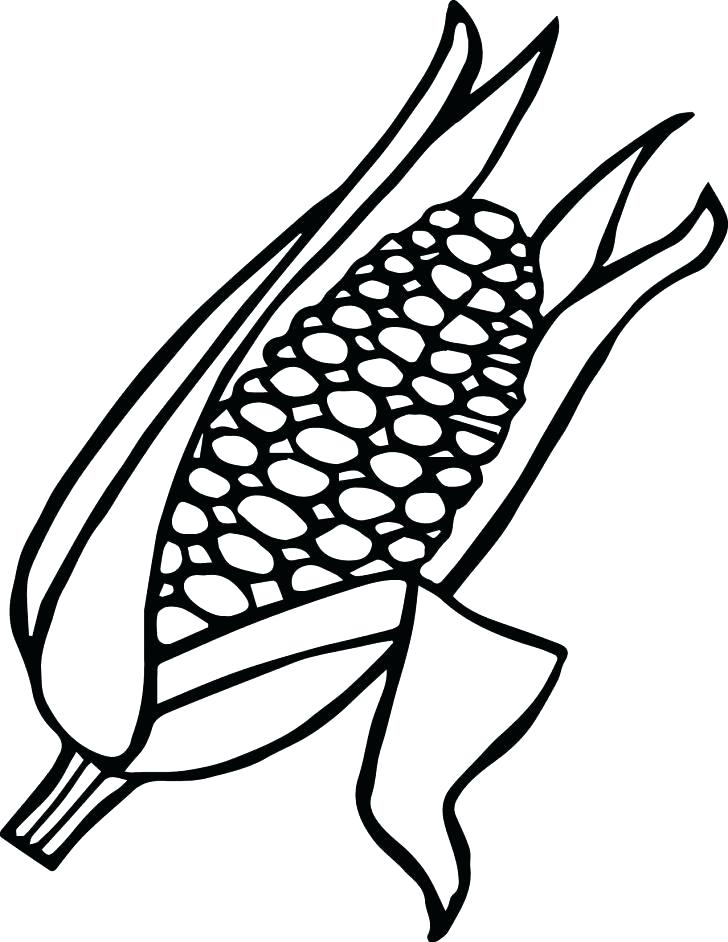 728x942 Corn Stalk Coloring Page Candy Corn Color Page Ear Of Coloring