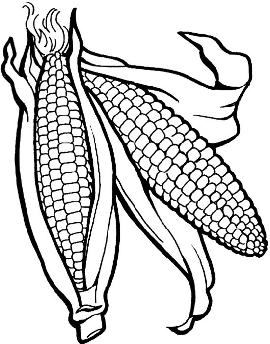 550x700 Corn The Vegetables Healthy Food Coloring Pages