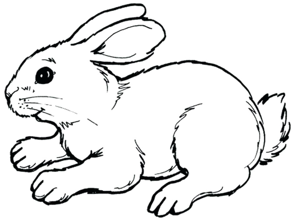 948x711 Easter Bunny Coloring Pages Cute Via Sheets Printable That You Can
