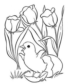 236x289 Easter Chick Coloring Pages Baby Chick Coloring Page Coloring