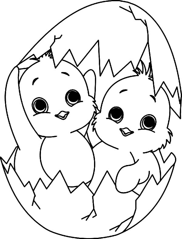 600x785 Baby Chick Coloring Pages