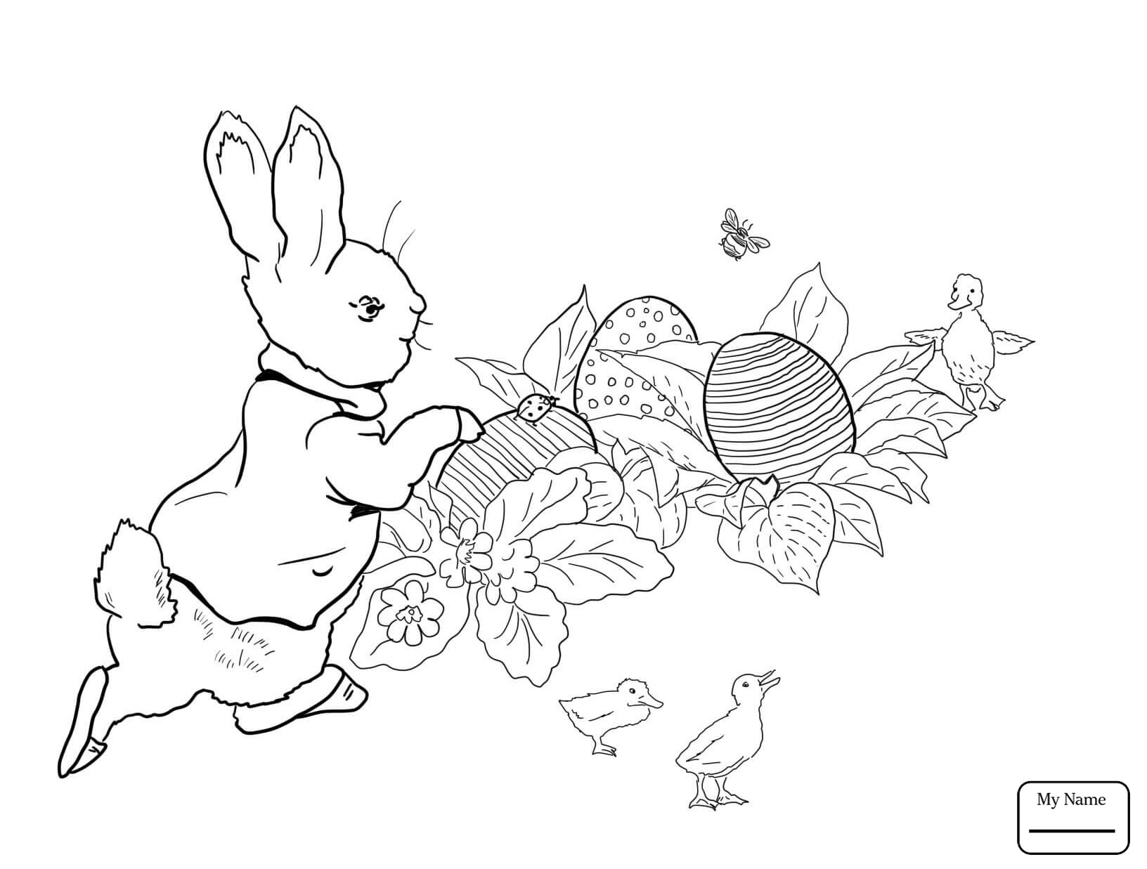 1632x1237 Radish Vegetables Coloring Pages For Kids New Peter Rabbit Easter