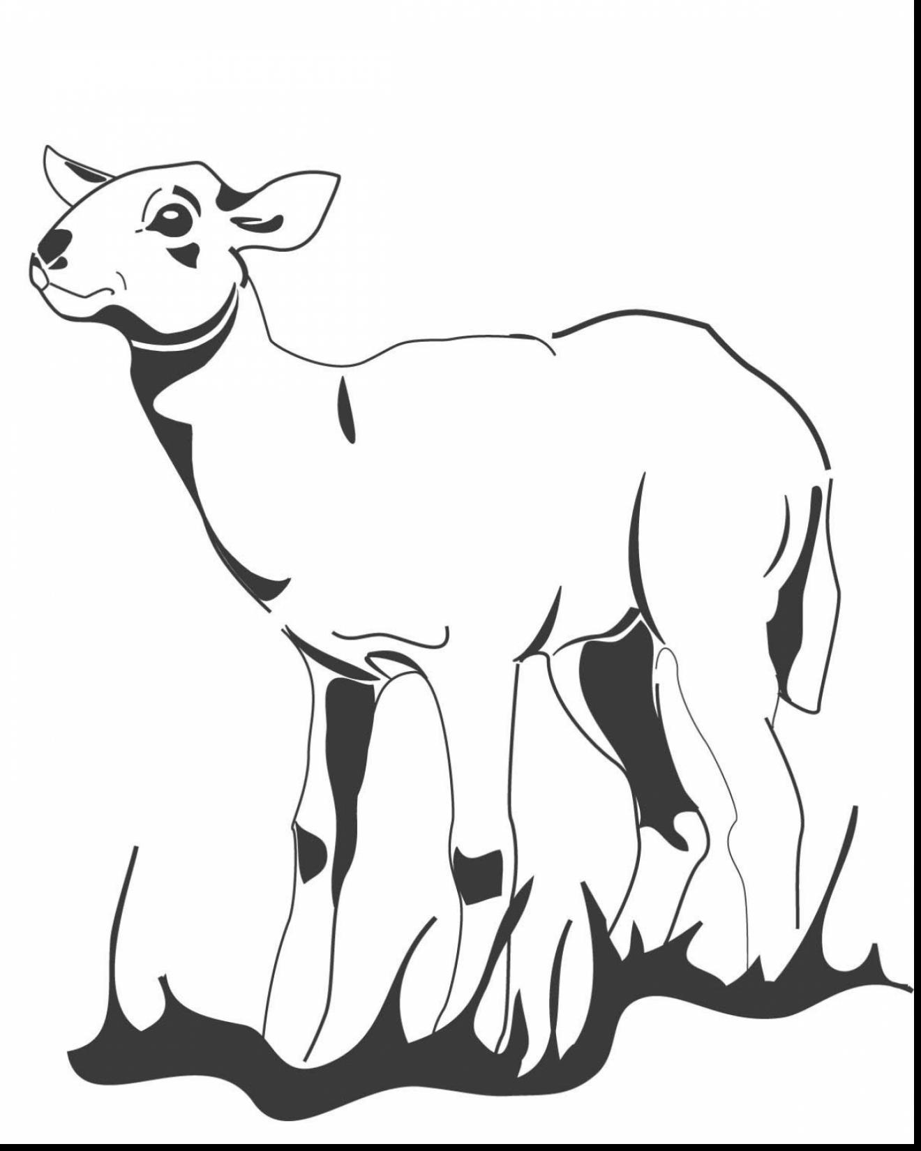 1320x1650 Incredible Lamb Coloring Page With Lamb Coloring Page