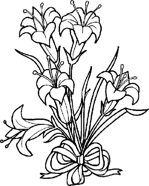 522x650 16 Best Lily Images On Pinterest Drawing Flowers Coloring Books