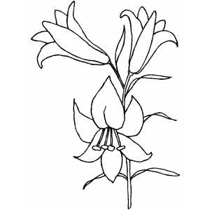 300x300 Easter Lily Clip Art
