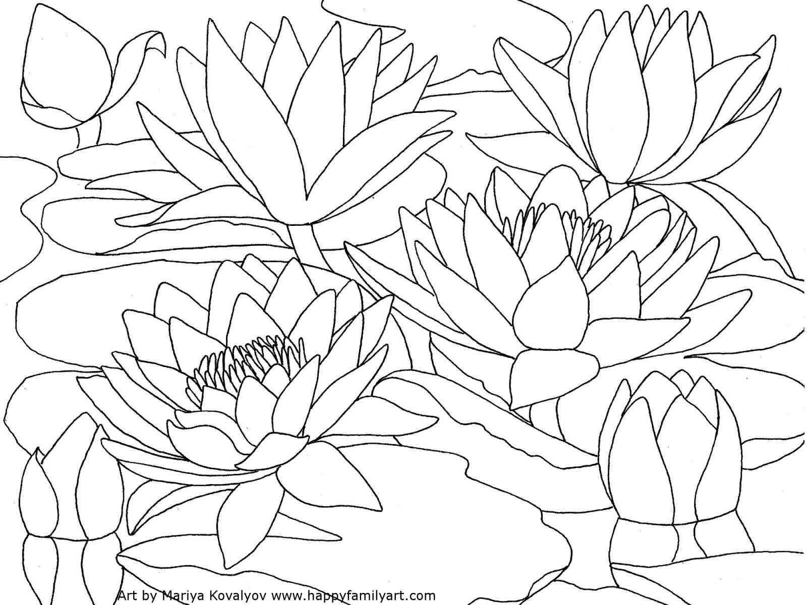 1600x1200 Lilium Flower Coloring Pages For Kids Freecolorngpages.co