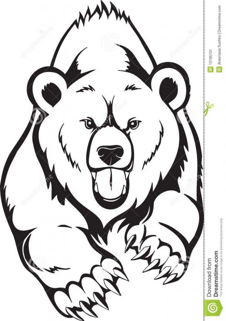 720x1024 Easy Drawing Of A Bear Best 25 Bear Sketch Ideas On Bear
