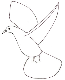 250x307 How To Draw A Dove