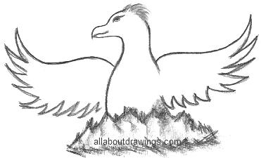 371x225 Drawings Of The Phoenix Bird