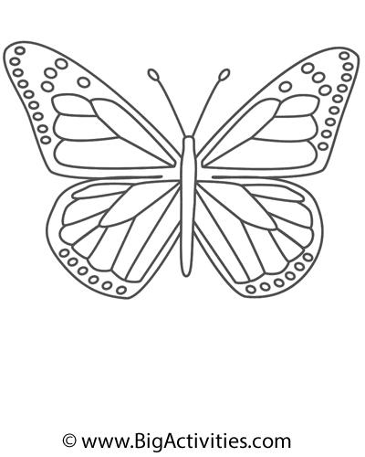 400x500 butterfly