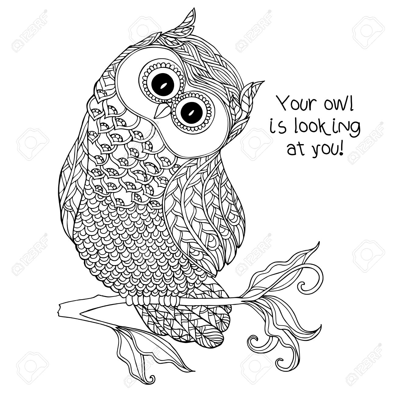 Easy Cute Owl Drawing
